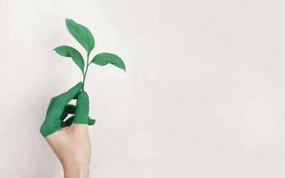 Conferência de Produção Mais Limpa e Mudanças Climáticas aborda a Economia Verde