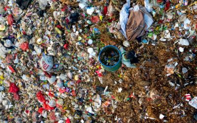 Trabalho informal nos lixões: um risco à vida dos catadores