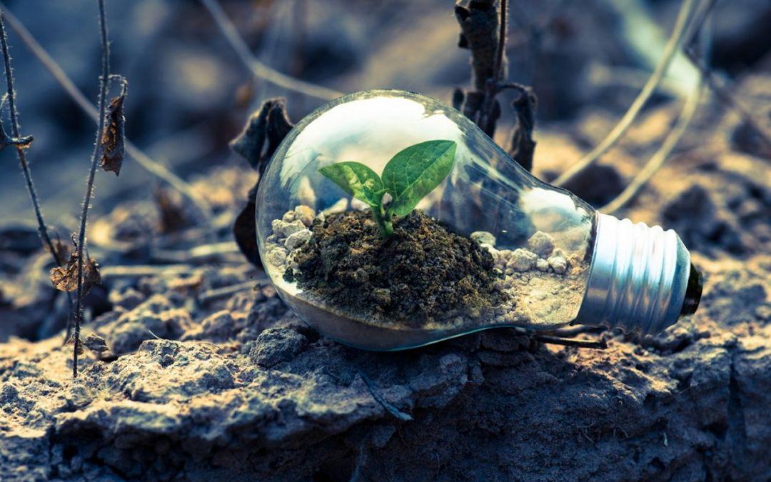 Desenvolvimento Sustentável: a Década da Ação é agora