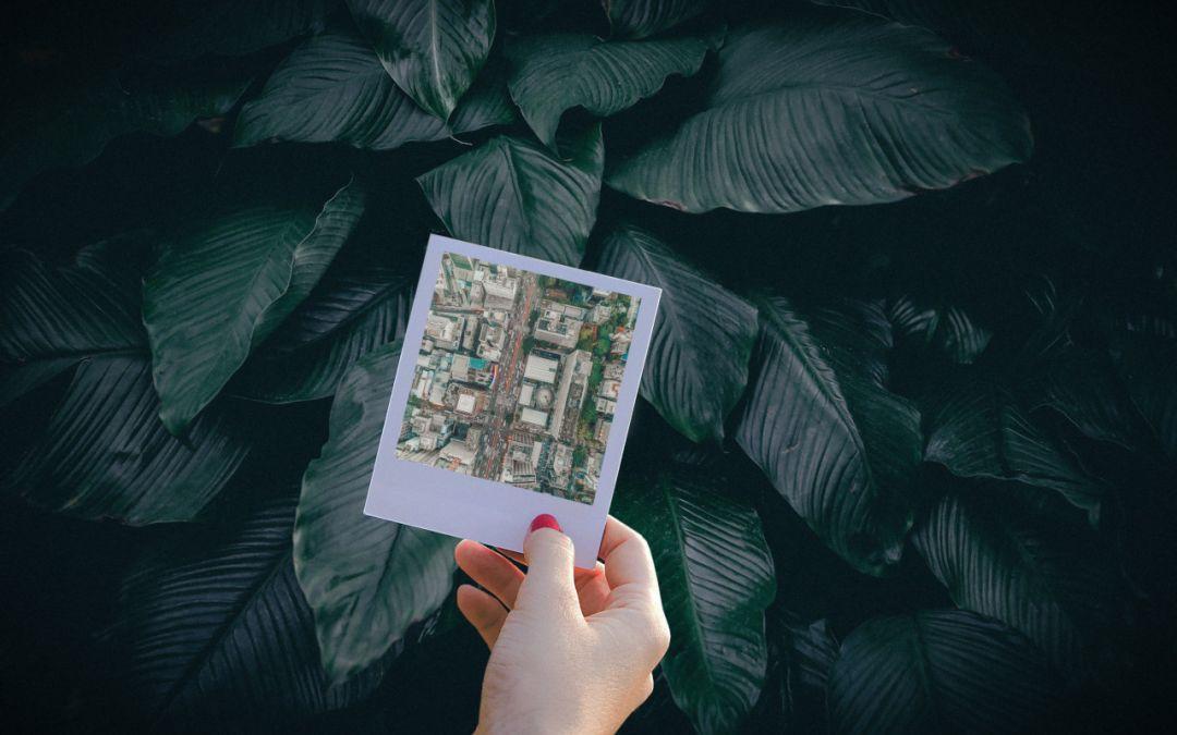 25 dicas ambientais para os gestores municipais que vão assumir em 2021