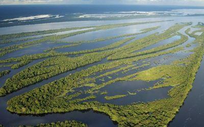 O desmatamento tem relação com a crise hídrica? Entenda!