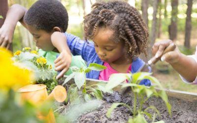 Crianças: 4 dicas para ajudar a cuidar do planeta
